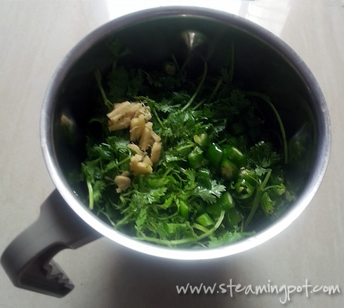 Coriander Leaves in Grinder