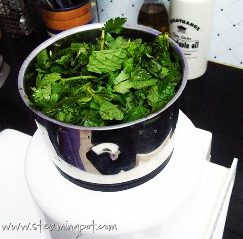 Mint and Coriander, Chopped