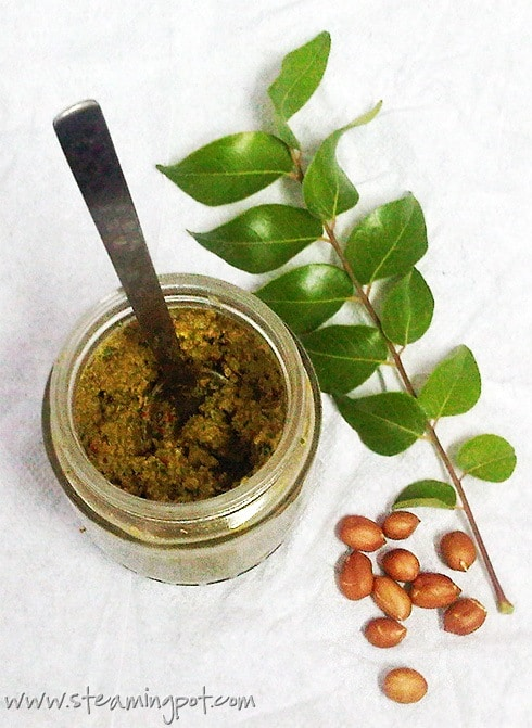 curry-leaf-peanut-chutney