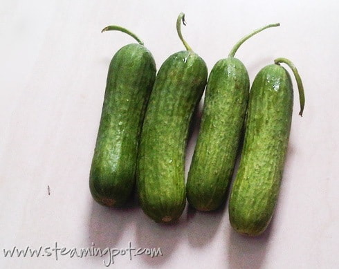 french-cucumbers-490