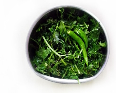 Coriander and Green Chilies