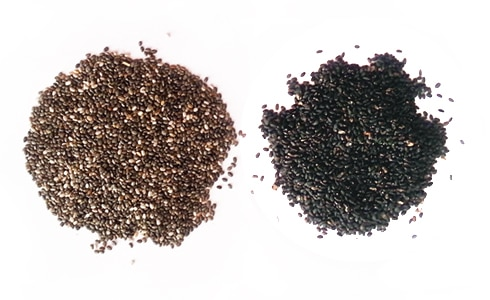 Chia Seeds Vs Sabja Seeds How They Differ The Steaming Pot